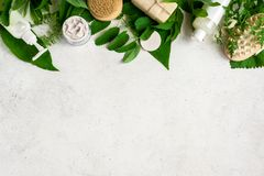 Natural skincare and leaves. Natural cosmetics and green leaves on white stone background, copy space. Natural organic skincare, bio research and healthy stock photo