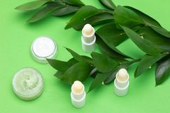 Natural cosmetics for lip skin care - lip balms, cream, honey sc royalty free stock images