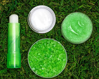 Natural cosmetics for lip skin care Stock Images