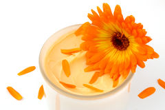 Natural cosmetics with Marigold Stock Photos