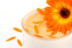 Natural cosmetics with Marigold Stock Images