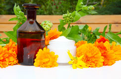 Natural Cosmetics from marigold Stock Photos