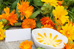 Natural Cosmetics from marigold with label Royalty Free Stock Images