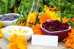 Natural cosmetics royalty free stock photography