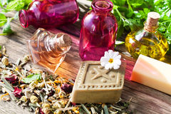 Natural cosmetics and medicine Royalty Free Stock Images