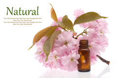 Natural cosmetics, remedies. Natural cosmetics - oil, herbal, flowers royalty free stock photos