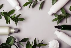 Natural Cosmetics set. Frame of Organic products and wild herbs royalty free stock images