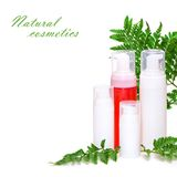 Natural cosmetics for skin care Royalty Free Stock Images