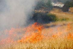 Natural Cover Fire Royalty Free Stock Photos