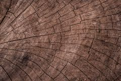 Natural Cracked Wood Texture royalty free stock image