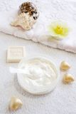 Natural cream-scrab for face and body care. Close up Stock Photography