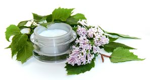 Natural cream and sprig birch cosmetic set Stock Photography