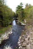 Natural Creek Stock Image
