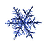 Natural crystal snowflake macro. Little piece of ice Royalty Free Stock Image