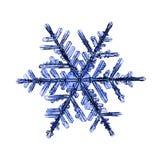 Natural crystal snowflake macro Royalty Free Stock Image
