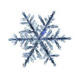 Natural crystal snowflake macro piece of ice Royalty Free Stock Photography
