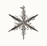 Natural crystal snowflake macro piece of ice Royalty Free Stock Image
