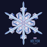 Natural crystal snowflake. Vector illustration Royalty Free Stock Photos