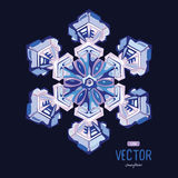 Natural crystal snowflake. Vector illustration Royalty Free Stock Photo