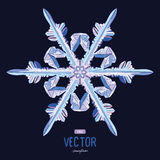 Natural crystal snowflake. Vector illustration Royalty Free Stock Photography