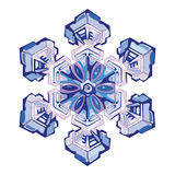 Natural crystal snowflake. On white, vector illustration Stock Photo