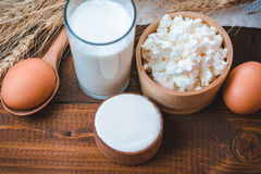 Natural Dairy homemade products Stock Photography
