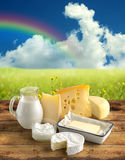 Natural dairy products. Assortment of dairy products in a rural scenery Stock Photography