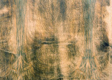 Natural dark brown wood texture. Royalty Free Stock Image
