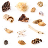 Natural Decorations Collection. Isolated on white Royalty Free Stock Image