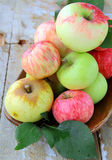 Natural delicious organic apples Royalty Free Stock Photography