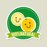 Natural design Royalty Free Stock Photography