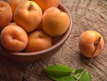 Natural dessert from ripe fruits apricots stock photos