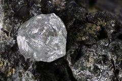 Natural diamond royalty free stock image