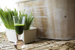 Natural dink wheatgrass shot. Wheatgrass juice in shot glass with fresh wheatgrass background Stock Image
