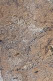 Natural dirty travertine stone texture. Termolit wall tiles. royalty free stock image