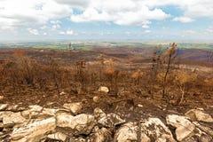 Destructive bush fires with brown burnt hillside stock photos