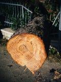 Natural disaster Stock Photos