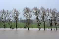 Natural disaster - Flood Stock Images
