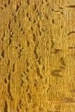 Natural distressed wood Stock Photos
