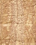 Natural texture of a sandstone wall. Strange figures of two men on the veiny background. Stock Image