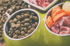 Natural and dry dog`s food stock photo