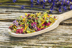 Natural dry herbal tea with meadow flowers Royalty Free Stock Photo