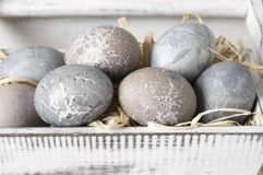 Natural dyed grey Easter eggs. Close-up in shabby white box with straw Stock Photography