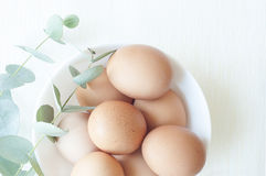 Natural Easter composition with eggs royalty free stock image
