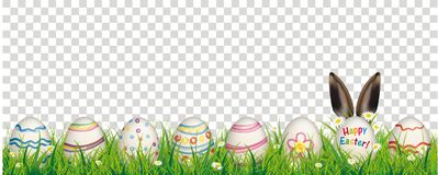 Natural Easter Eggs Happy Easter Rabbit Ears Transparent Header. White flowers in grass with colored easter eggs on the checked background Royalty Free Stock Image