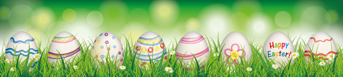 Natural Easter Eggs Spring Happy Easter Header. White flowers in grass with colored easter eggs on the bokeh background Stock Photography