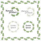 Natural eco-friendly product logo. Tree branch with green leaves Royalty Free Stock Image