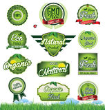 Natural eco green label collection Stock Photography