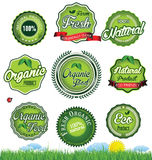 Natural eco green label collection Royalty Free Stock Photos
