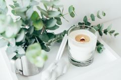 Natural eco home decor with green leaves and burning candle on t. Ray, boho interior decorations Stock Image